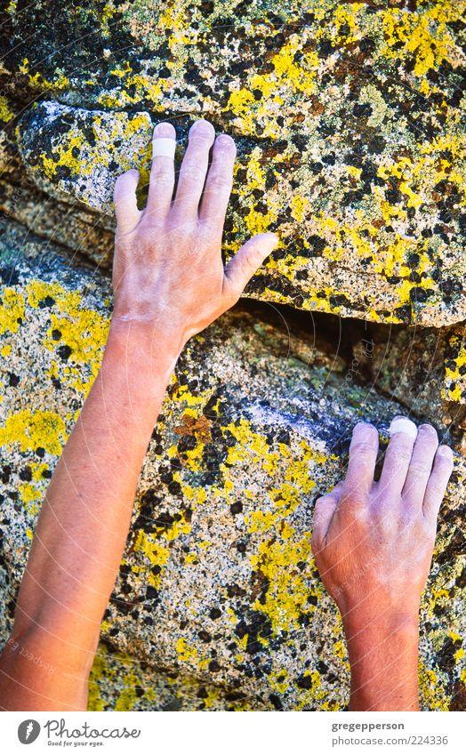 Kletterer greift nach einem Griff. Abenteuer Sport Klettern Bergsteigen Hand 1 Mensch Berge u. Gebirge sportlich Mut Tatkraft Vertrauen anstrengen Risiko