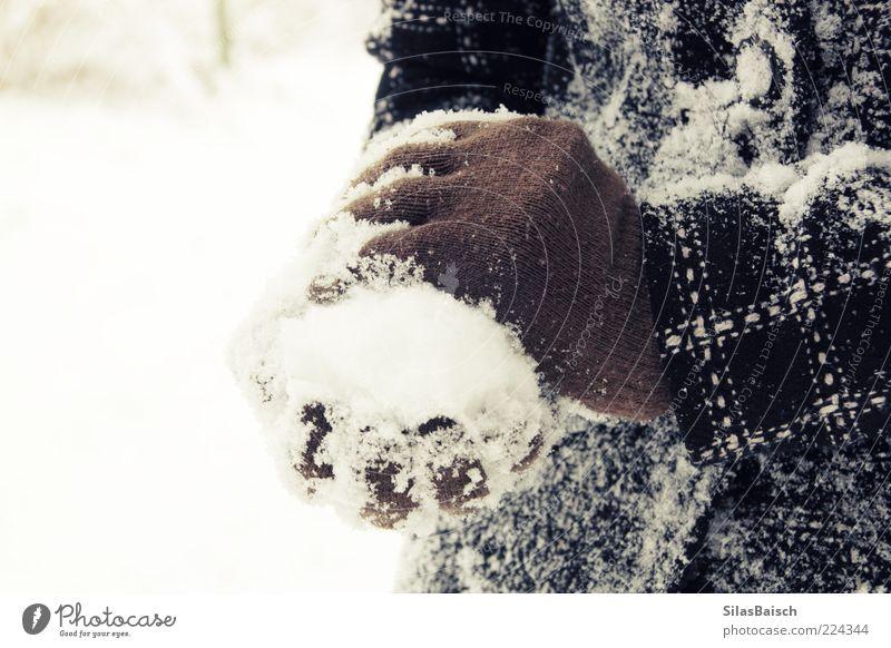 Schneeballschlacht Natur weiß Winter Freude schwarz Spielen braun Kindheit Eis Frost Jacke Lebensfreude frieren frech Mantel