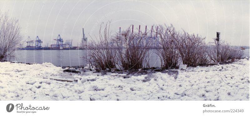 Eiszeit 2 Himmel Natur Winter ruhig kalt Schnee grau Landschaft Eis Frost Fluss Flussufer schlechtes Wetter Elbe Hafenkran