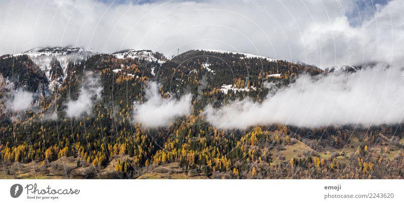 wolkig Umwelt Natur Landschaft Wolken Herbst Wald Hügel Berge u. Gebirge natürlich Tourismus Kanton Wallis Schweiz Farbfoto Außenaufnahme Menschenleer Tag