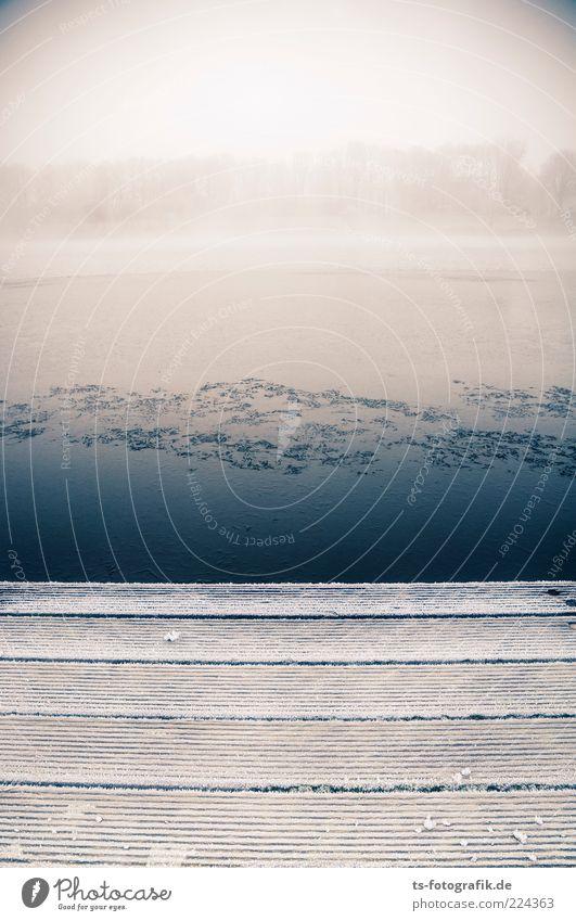 Winter-Anleger III Umwelt Natur Landschaft Pflanze Urelemente Luft Horizont Wetter Nebel Eis Frost Schnee Baum Küste Seeufer Flussufer kalt blau grau weiß
