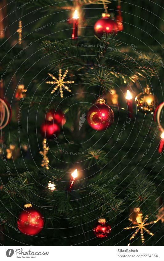 Ganz Klassisch Feste & Feiern Weihnachtsbaum Weihnachtsdekoration Weihnachtsstern Stern Christbaumkugel Kugel Schmuck Schmuckanhänger Lichterkette Basteln Tanne