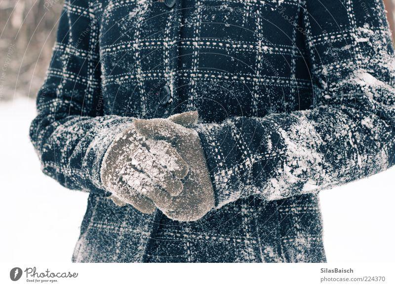 Eingeschneit Winter kalt Schnee Spielen Jacke frech Mantel Schneelandschaft Begeisterung Handschuhe kleben Schneeballschlacht