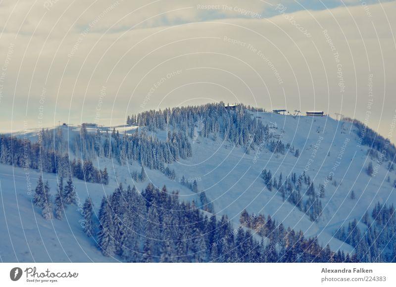 Hartkaiser / Tirol Umwelt Natur Landschaft Pflanze Erde Luft Himmel Wolken Winter Klima Schnee Baum Tanne Wald kalt Berge u. Gebirge Österreich Bundesland Tirol