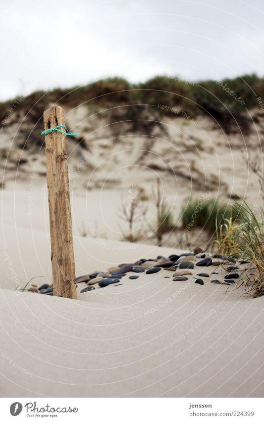 Snøre Natur Strand ruhig Landschaft Holz Gras Umwelt Sand Stein Küste stehen Stranddüne Düne Pfosten verwittert Holzpfahl