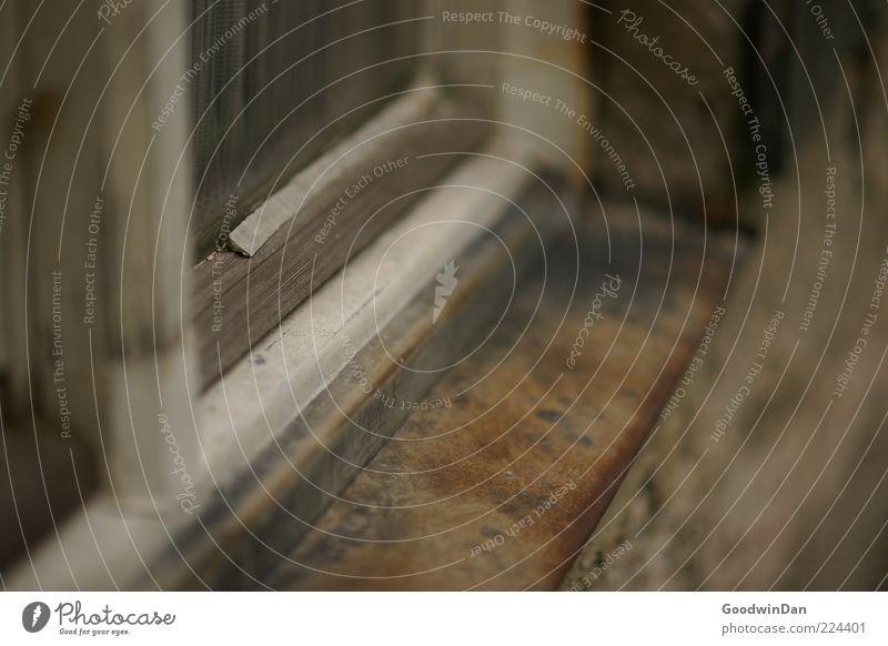 Rost. Mauer Wand Fassade Fensterbrett Fensterrahmen Fenstersims alt dreckig kalt braun grau Farbfoto Außenaufnahme Menschenleer Tag Schwache Tiefenschärfe
