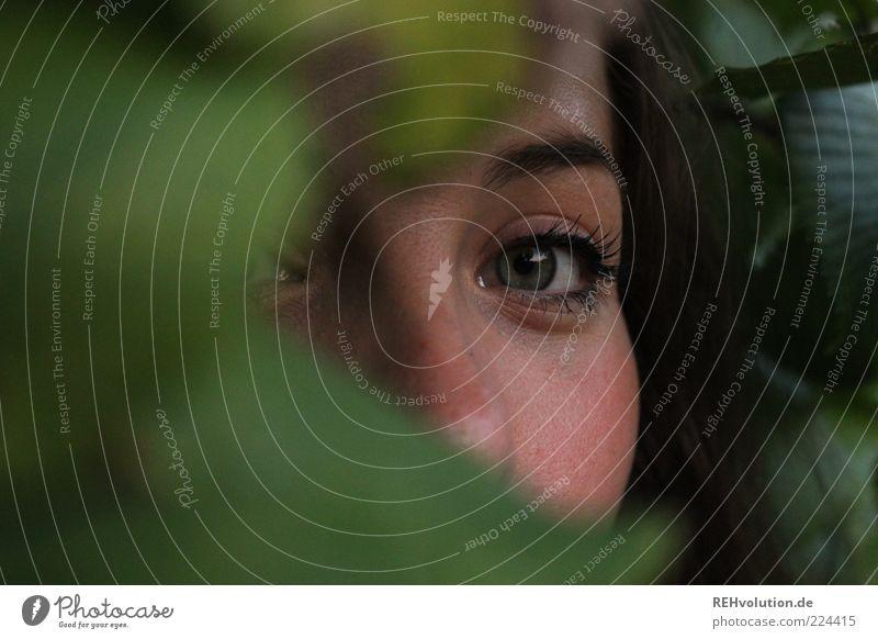 augenblick *für helgi* Mensch feminin Junge Frau Jugendliche Erwachsene Auge 1 18-30 Jahre Blick Versteck geheimnisvoll beobachten Schminke schön Baum Pflanze