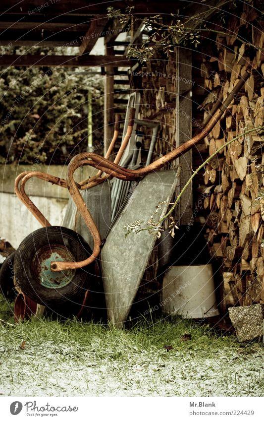 winterzeit ist ruhezeit weiß grün Winter Wiese Schnee Garten Holz Gras braun Eis Frost authentisch frieren Stapel Brennholz Holzstapel