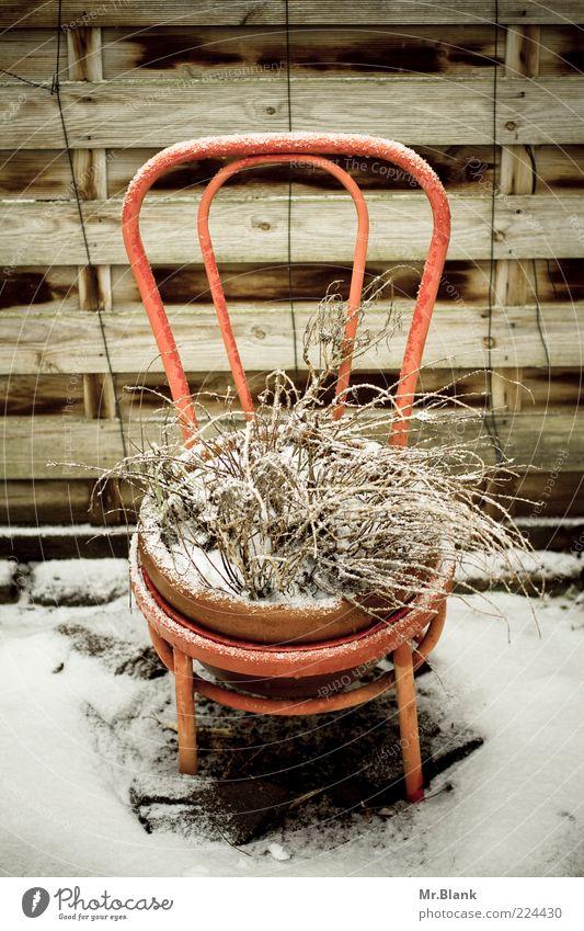 winterzeit ist ruhezeit II Wohnung Garten Winter Eis Frost Schnee Pflanze warten alt authentisch braun weiß Traurigkeit Sehnsucht Einsamkeit Stuhl Stuhllehne