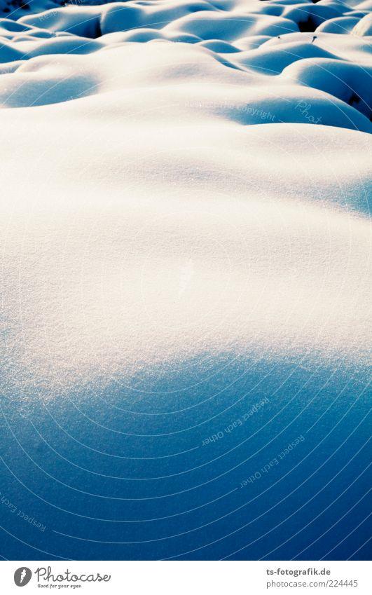 Erotic snowfield Umwelt Natur Landschaft Urelemente Winter Klima Wetter Schönes Wetter Eis Frost Schnee kalt rund blau weiß Kurve Schneefeld Schneelandschaft