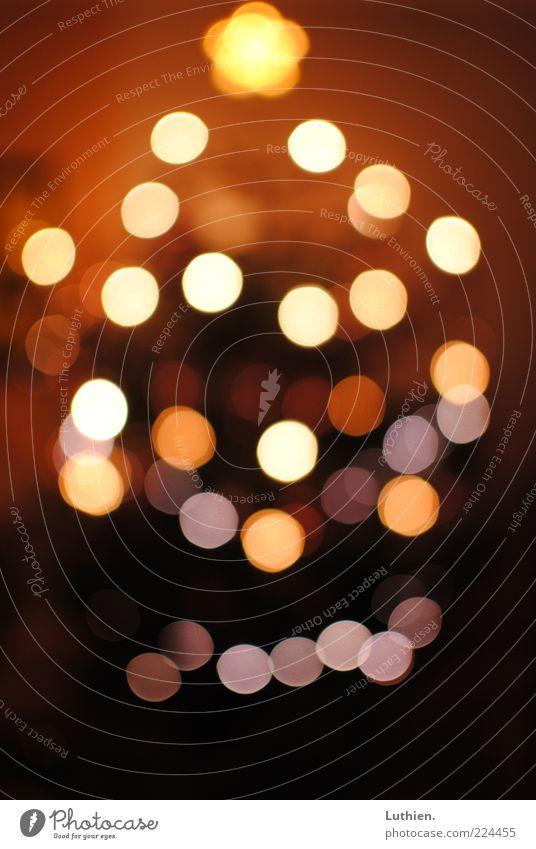 Weihnachtsbokeh Weihnachtsbaum leuchten mehrfarbig Unschärfe Licht Weihnachten & Advent Stern Farbfoto Innenaufnahme Abend Kunstlicht Menschenleer Lichtpunkt