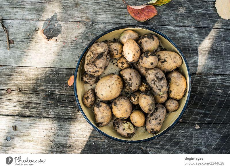 Kartoffeln mit Schmutz Gemüse Garten Gartenarbeit Natur Pflanze Erde frisch natürlich Lebensmittel heimwärts organisch Bauernhof roh Gesundheit Ackerbau