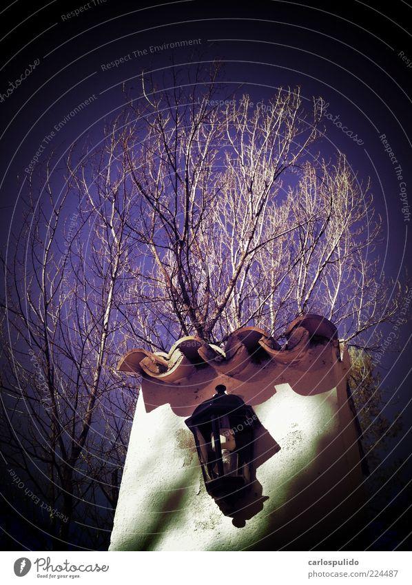 Sommerurlaub Sonne Haus alt Landhaus Baum Andalusien Spanien mediterran ländlich Feld Lampion Kunstlicht Dachziegel Farbfoto Außenaufnahme Menschenleer Morgen
