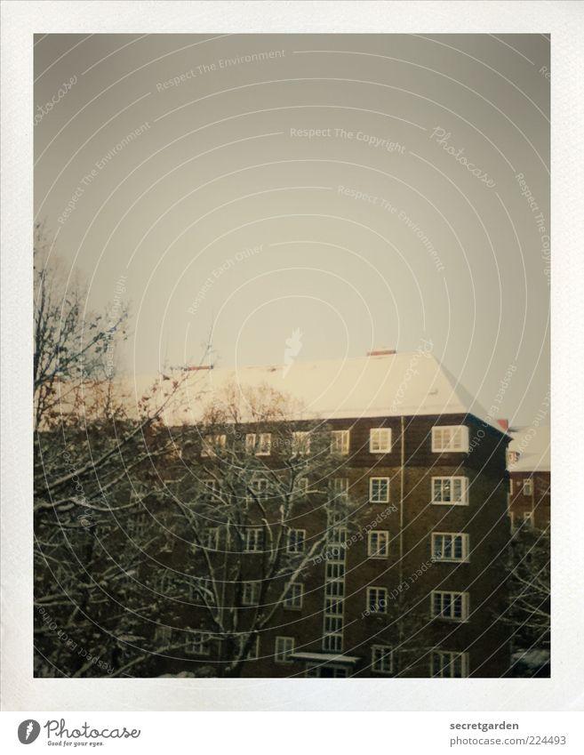 jeder lebt in seinem eigenen kleinen kosmos. weiß Stadt Baum ruhig Winter Haus dunkel kalt Schnee Fenster Architektur Gebäude braun Eis Fassade retro