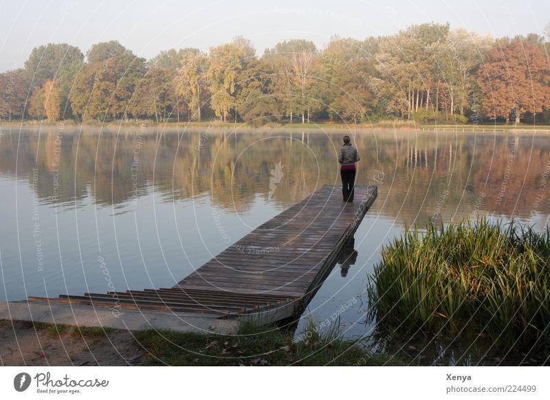 Herbstflimmern Mensch Natur ruhig Einsamkeit Herbst Landschaft träumen Traurigkeit Denken See warten Hoffnung stehen Sehnsucht Steg Seeufer