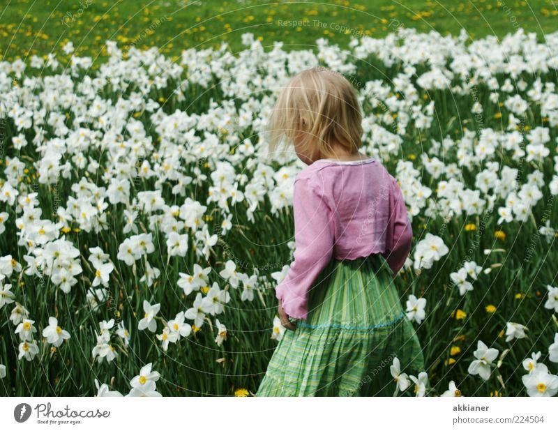 kleine Blumenfee Mensch Kind Mädchen Kindheit Haare & Frisuren Rücken Arme Umwelt Natur Pflanze Frühling Blüte Garten Park Wiese hell natürlich grün rosa weiß