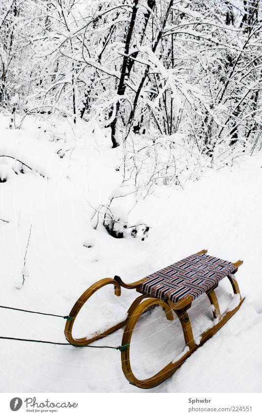 Einsamer Schlitten Ausflug Winter Schnee kalt Außenaufnahme Menschenleer Kontrast Starke Tiefenschärfe Schneedecke Schneelandschaft klassisch altmodisch