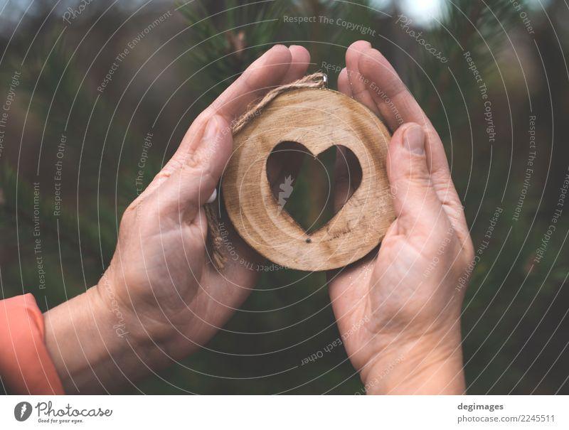 Hölzerne Herzform auf Tanne Dekoration & Verzierung Weihnachten & Advent Hand Natur Baum Wald Holz alt Liebe natürlich braun grün weiß Hintergrund Rinde