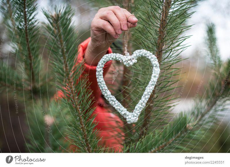 Hand halten Herzform von Kristallen Reichtum Design Winter Dekoration & Verzierung Frau Erwachsene Sand Baum Wald Mode Schmuck Liebe rot Romantik Diamant Halt