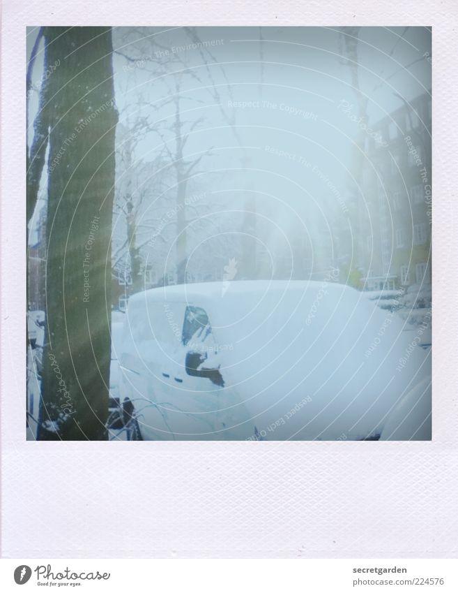 Und so endet das Jahr wie es begann. Natur weiß Stadt Baum Winter kalt Schnee Umwelt PKW Stimmung hell leuchten analog Polaroid Fahrzeug parken