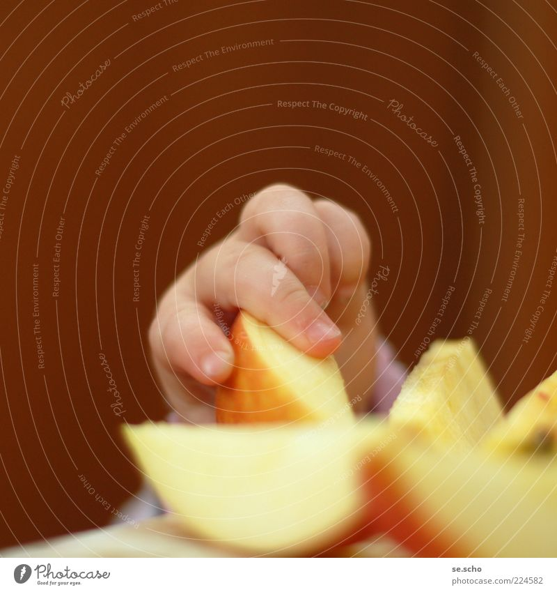 Zugriff Kind rot gelb Essen Gesundheit Baby Frucht gold Lebensmittel frisch Ernährung Finger niedlich Apfel Teile u. Stücke Appetit & Hunger