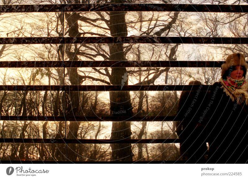 Schönes. Neues. Frau Mensch Natur Jugendliche Baum schön Winter Erwachsene Wald Herbst Umwelt träumen authentisch verrückt stehen
