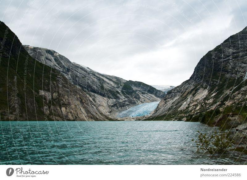 Guten Rutsch... Ferien & Urlaub & Reisen Ferne kalt Freiheit Berge u. Gebirge Umwelt Küste Ausflug ästhetisch Klima natürlich Reisefotografie Bucht Gletscher Norwegen Klimawandel