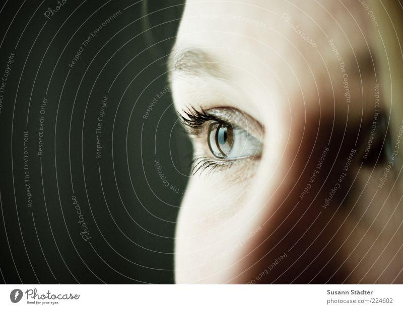Blick nach 2011 Mensch Jugendliche Gesicht Auge feminin träumen Traurigkeit braun beobachten Frau Wimpern Augenbraue Junge Frau Frauenaugen Augenfarbe