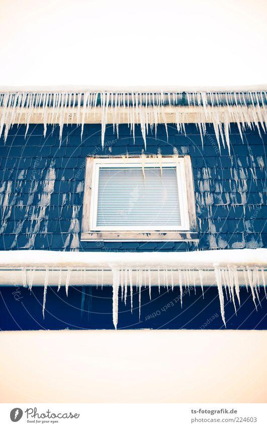 Fensterln für Fakire Umwelt Urelemente Winter Wetter Eis Frost Haus Fassade Dachrinne kalt Spitze stachelig blau weiß Eiszapfen hängend polarkälte Farbfoto