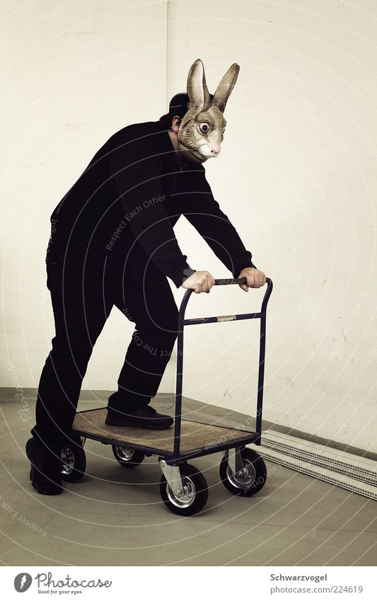 Aus dem Weg, ihr Igel! Mensch Tier Spielen Bewegung träumen Stimmung außergewöhnlich fahren Maske Tiergesicht fantastisch Hase & Kaninchen trashig bizarr Witz