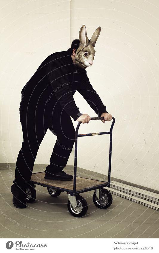 Aus dem Weg, ihr Igel! Mensch Tier Spielen Bewegung träumen Stimmung außergewöhnlich fahren Maske Tiergesicht fantastisch Hase & Kaninchen trashig bizarr Witz rollen