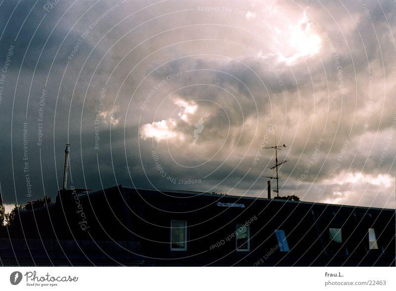 Abend Stadtteil Dach Wolken Vogel Dämmerung Regenwolken Wetter Himmel Schornstein Sonne