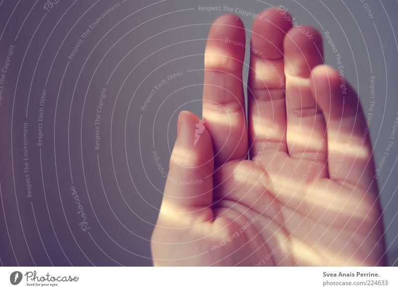 geben? Jugendliche Hand Gefühle hell Stimmung Linie Zufriedenheit natürlich Finger leuchten Junge Frau genießen Lichtspiel Schattenspiel Schattenseite