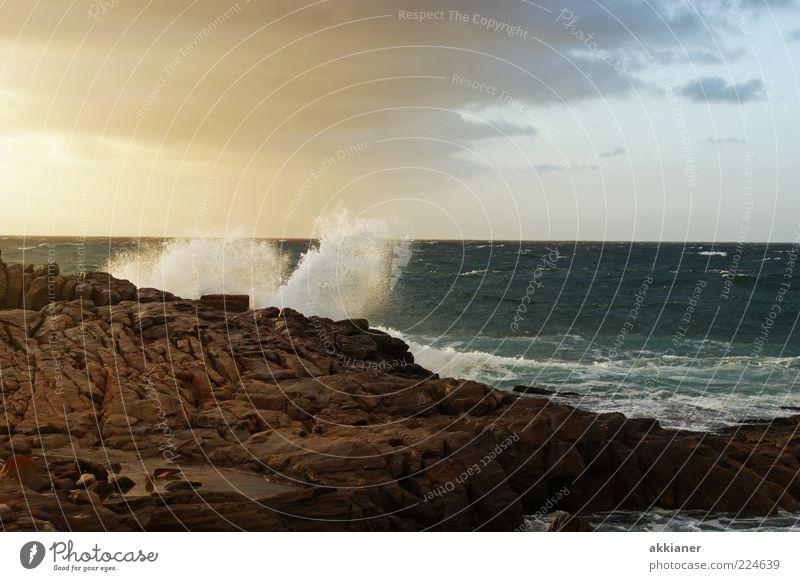 Naturgewalten Umwelt Landschaft Urelemente Erde Luft Wasser Sommer Wellen Küste Meer nass natürlich Gischt Klippe Stein Felsen Farbfoto Gedeckte Farben