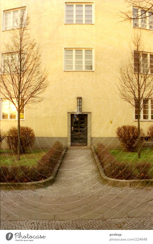 Vorderansicht Baum Pflanze Haus Herbst Fenster Garten Gras Architektur Tür Fassade authentisch einfach Sauberkeit Bürgersteig Eingang