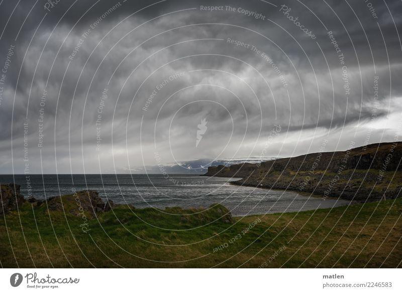 Gelockte Wolken Natur Landschaft Himmel Horizont Frühling schlechtes Wetter Wind Gras Felsen Berge u. Gebirge Schneebedeckte Gipfel Küste Strand Fjord Meer
