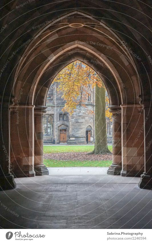Treten Sie ein. Kunst Kultur Umwelt Herbst Schönes Wetter Gras Garten Wiese Glasgow Großbritannien Schottland Europa Stadt Altstadt Menschenleer Bauwerk Gebäude