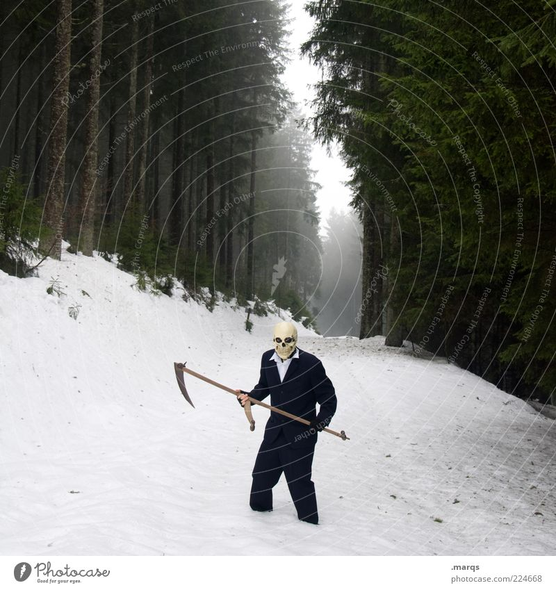 Gevatter Halloween maskulin Leben 1 Mensch Natur Winter Nebel Wald Anzug Zeichen bedrohlich Coolness gruselig kalt Gefühle Trauer Angst Entsetzen Todesangst