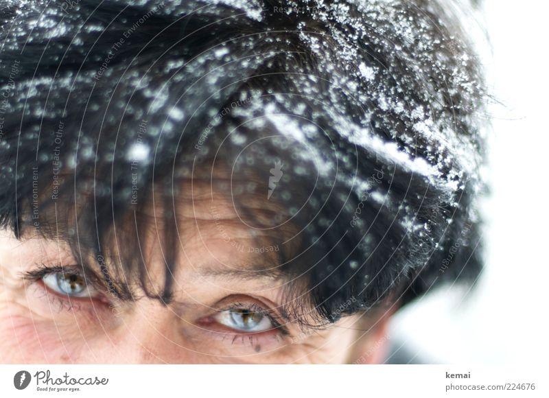 Schwarz wie Ebenholz Mensch Frau weiß Winter schwarz Gesicht Erwachsene Auge Leben kalt Schnee Senior Kopf Haare & Frisuren Schneefall Eis
