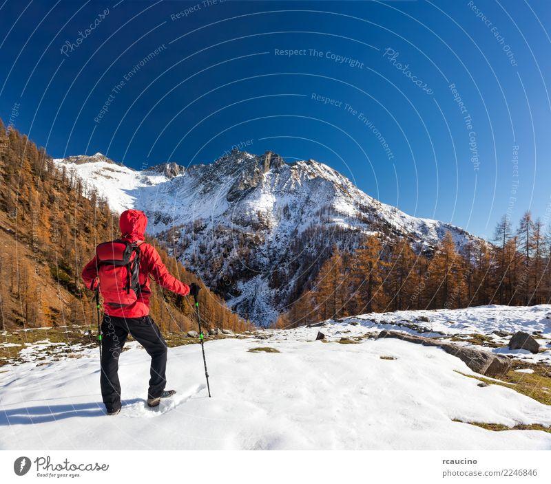Mann ist in Winterbergen wandern Erholung Ferien & Urlaub & Reisen Tourismus Abenteuer Expedition Sport Mensch Erwachsene Natur Landschaft Herbst Wald Alpen