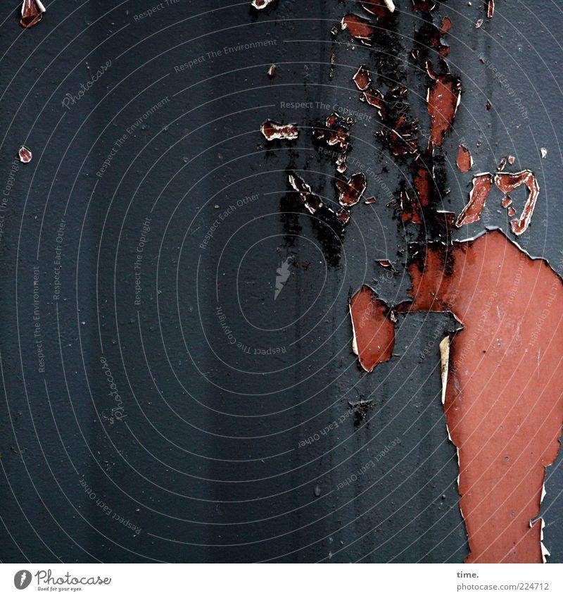 HH10.2   Tough To The Bones alt blau Farbe grau Farbstoff Metall kaputt Wandel & Veränderung Vergänglichkeit Metallwaren Rost Riss Eisen Container Zerstörung Blech