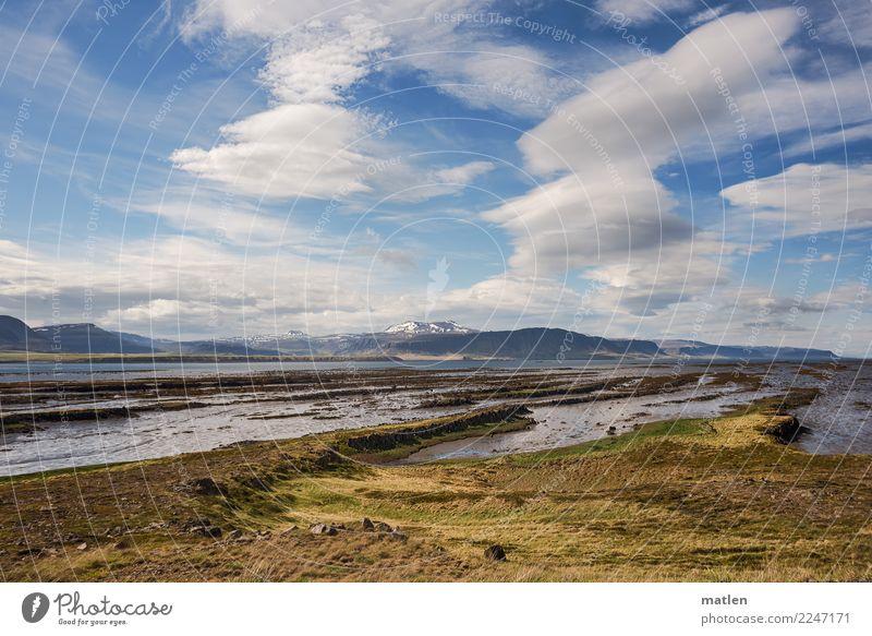 schönes Wetter Landschaft Pflanze Himmel Wolken Horizont Frühling Schönes Wetter Wind Gras Moos Felsen Berge u. Gebirge Schneebedeckte Gipfel Küste Strand Bucht