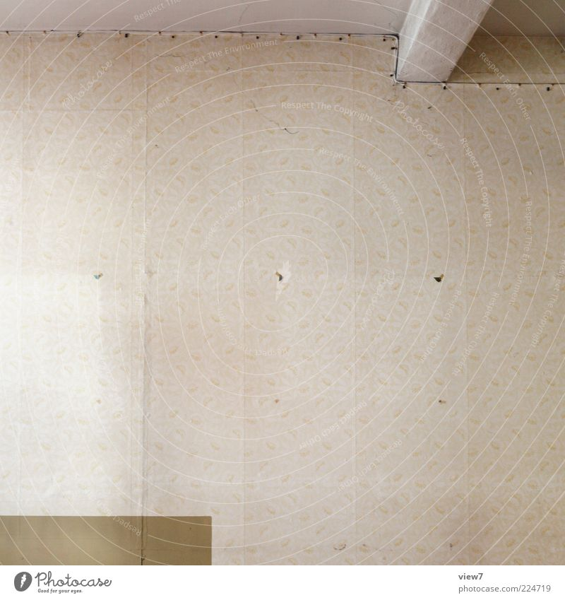 Tapetenbahnen alt Einsamkeit Ferne Wand Linie braun Raum Wohnung dreckig Design Ordnung ästhetisch Innenarchitektur Streifen retro einfach