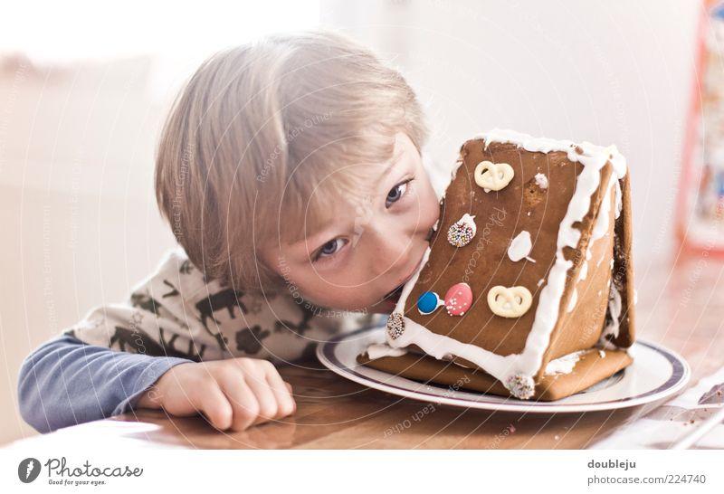 lebkuchenbeisserei Kind Winter Ernährung Junge Holz Essen Tierjunges Kindheit blond maskulin Tisch Appetit & Hunger Süßwaren Wachsamkeit Teller direkt