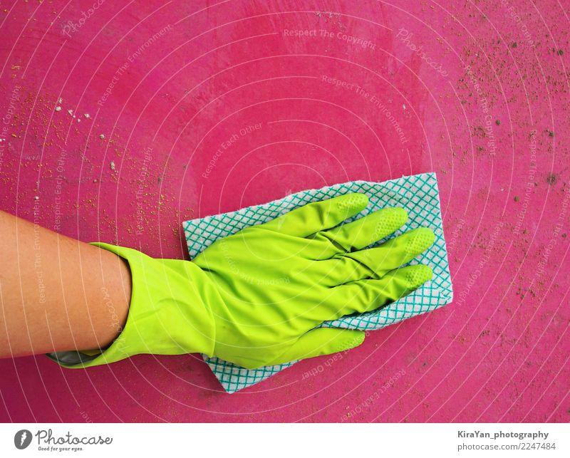 Frauenhand Formreinigung Gesundheitswesen Allergie Häusliches Leben Arbeit & Erwerbstätigkeit Hand Handschuhe Watte Sauberkeit grün rosa rot Schimmelpilze Wand