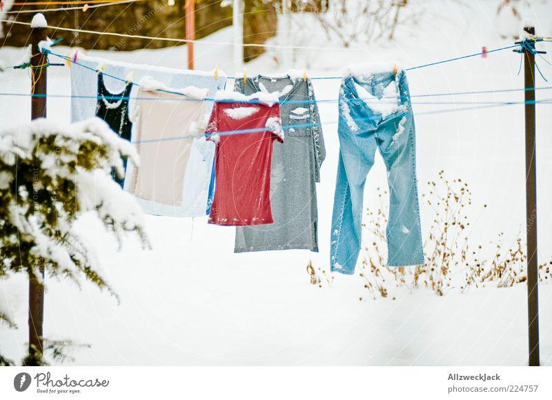 und ganz plötzlich war Schnee... Winter kalt Schnee Bekleidung Frost T-Shirt Jeanshose gefroren Unterwäsche Wäsche waschen Wäscheleine Wintertag Waschtag