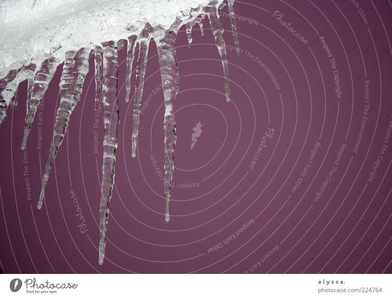 rosarote eiszeit. Himmel Winter Eis Frost Eiszapfen weiß Farbfoto Außenaufnahme Dämmerung herunterhängend Menschenleer gefroren Wasser Textfreiraum rechts