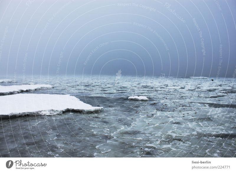 Stilles Wasser Natur Landschaft Winter Wetter Eis Frost Schnee Küste Ostsee Meer Fernweh ruhig leer Eisscholle Himmel Norden Dezember Januar Menschenleer