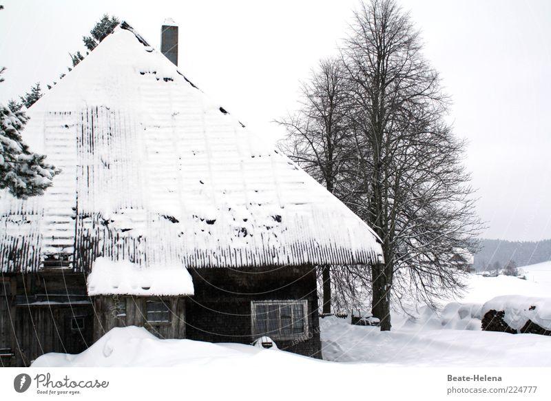 Strenger Winter im Schwarzwald Winterurlaub Haus schwarz weiß kalt Schnee Schwarzwaldhaus Schönwald Dachüberhang Tradition Vergangenheit abgelegen Einsamkeit