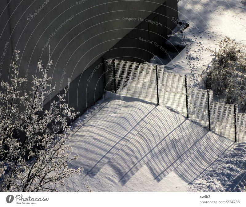 Schattenseite Winter Klima Wetter Schönes Wetter Eis Frost Pflanze Baum Sträucher Haus Mauer Wand Fassade Zaun Drahtzaun eckig kalt grau schwarz weiß ruhig